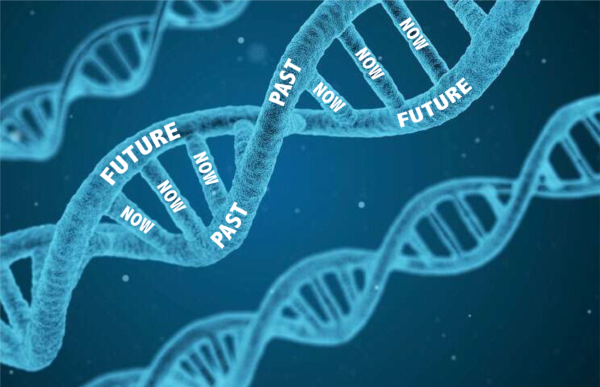 The DNA of: NOW is a behavioral concept how we experience the moment